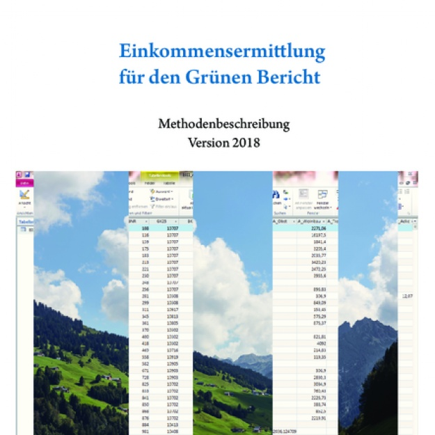 Einkommensermittlung Grüner Bericht Version 2018
