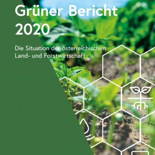 Grüner Bericht 2020