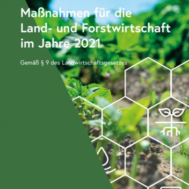 Maßnahmen 2021