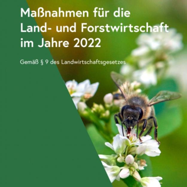 Maßnahmen 2022
