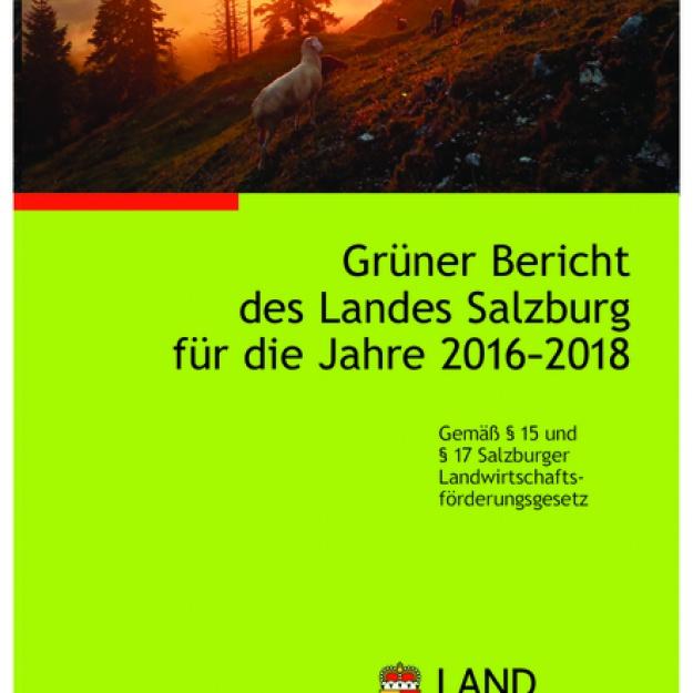 Grüner Bericht Salzburg 2016 - 2018